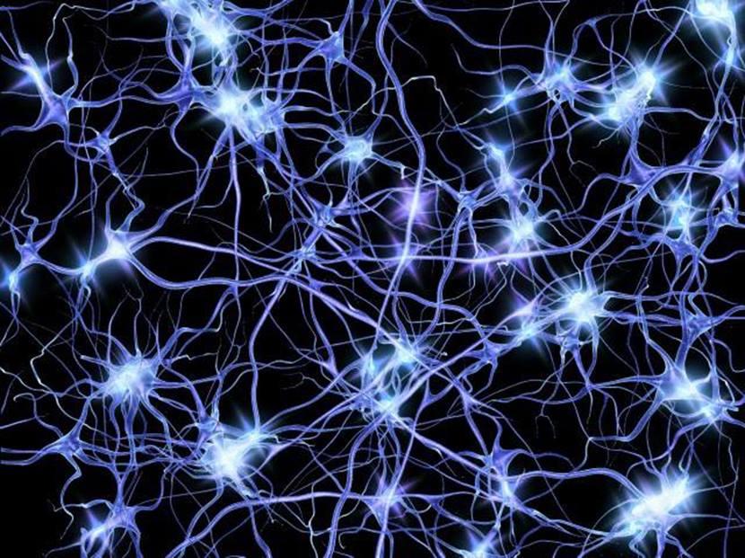 Patologie Neurologiche e Malattie Degenerative: La necessità di un'urgenza dedicata
